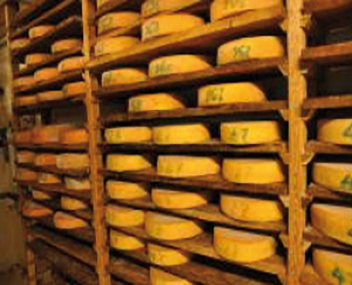Fromagerie Montbardon